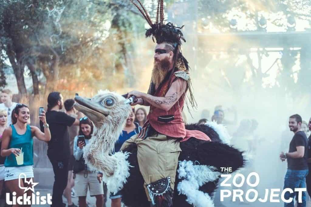Man in large Ostrich Bird Costume Parades Around Zoo Project Festival